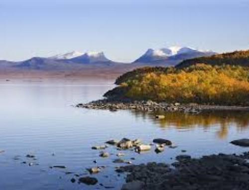 Avsiktsförklaring från Norrbotten